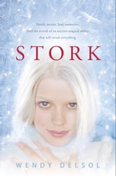 Stork ebook by Wendy Delsol
