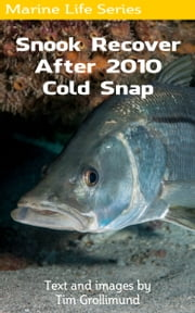 Snook Recover After 2010 Cold Snap ebook by Tim Grollimund