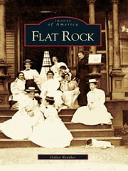 Flat Rock ebook by Galen Reuther