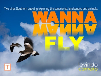 Wanna Wanna Fly ebook by Levindo Carneiro