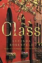 Class ebook by Lucinda Rosenfeld