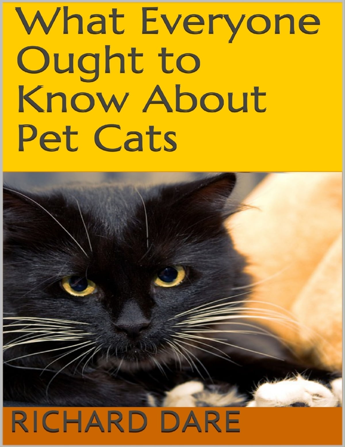 How to dare cats
