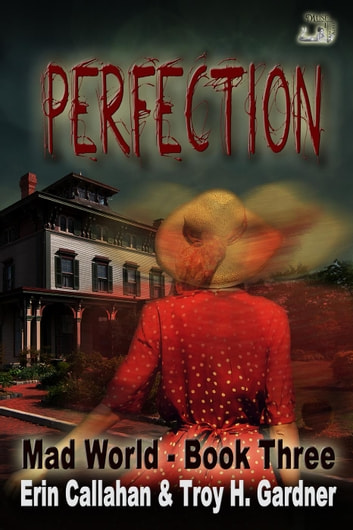 Perfection - Mad World Series, #3 ebook by Erin Callahan,Troy H. Gardner