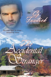 The Accidental Stranger ebook by Cj  Fosdick