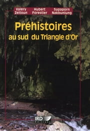 Préhistoires au sud du Triangle d'or ebook by Kobo.Web.Store.Products.Fields.ContributorFieldViewModel