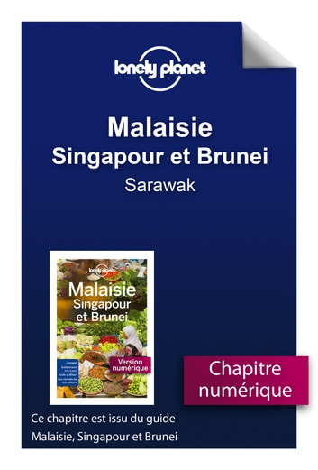 Malaisie, Singapour et Brunei - Sarawak ebook by LONELY PLANET FR