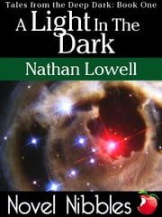 A Light In The Dark ebook by Nathan Lowell