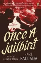 Once a Jailbird ebook by Hans Fallada