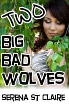 Two Big Bad Wolves ebook by