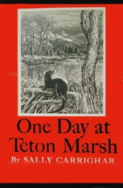 One Day At Teton Marsh ebook by Sally Carrighar