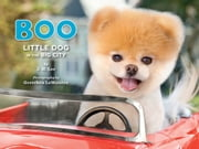 Boo: Little Dog in the Big City ebook by J.H. Lee,Gretchen LeMaistre