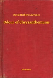 an analysis of the vivid point of view in dh lawrence odour of chrysenthemus Lawrence opens his story with vivid imagery that suggests odour of chrysanthemums themes critical analysis of odour of chrysanthemums by d h lawrence.