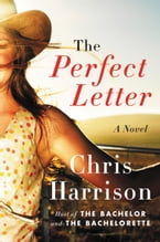 The Perfect Letter, A Novel