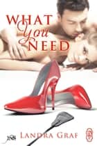 What You Need (1Night Stand) ebook by Landra Graf