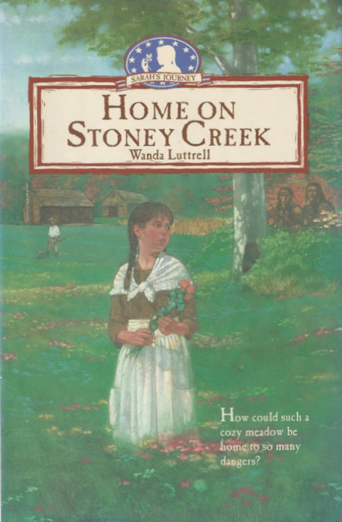 Home on Stoney Creek eBook by Wanda Luttrell - 9781476157528 | Rakuten Kobo