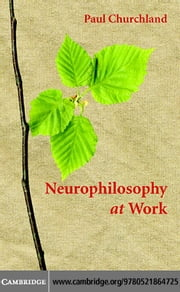 Neurophilosophy at Work ebook by Churchland,Paul