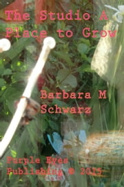The Studio A Place To Grow ebook by Barbara M Schwarz