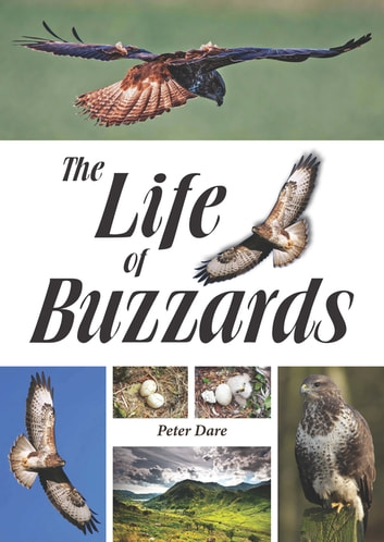 The Life of Buzzards ebook by Peter Dare