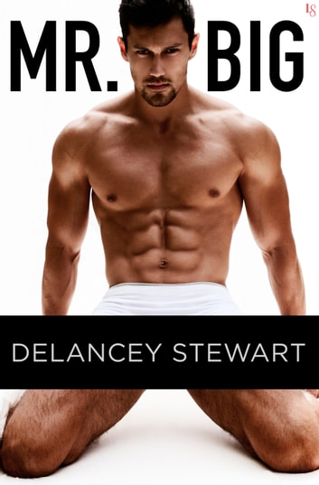 Mr. Big - A Novel ebook by Delancey Stewart