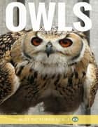 Owls ebook by Just Pictures