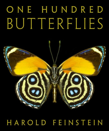 One Hundred Butterflies ebook by Harold Feinstein