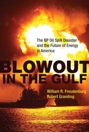 Blowout in the Gulf - The BP Oil Spill Disaster and the Future of Energy in America ebook by William R. Freudenburg,Robert Gramling