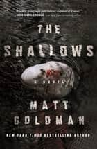 The Shallows - A Nils Shapiro Novel ebook by Matt Goldman
