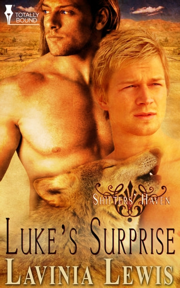 Luke's Surprise ebook by Lavinia Lewis