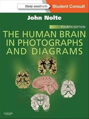 The Human Brain in Photographs and Diagrams ebook by John Nolte