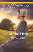 A Love for Lizzie ebook by Tracey J. Lyons