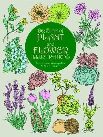 Big Book of Plant and Flower Illustrations ebook by
