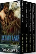 The 3xtasy Lake Collection, Volume 2 ebook by