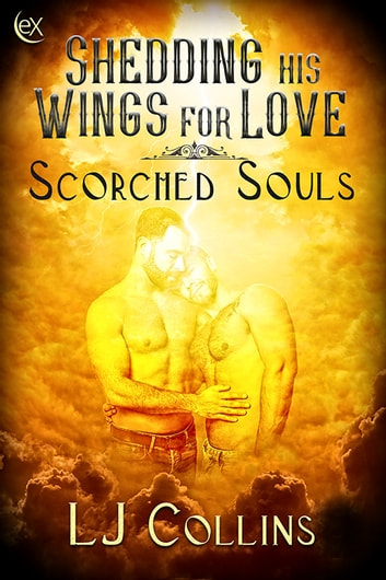 Shedding His Wings For Love ebook by LJ Collins