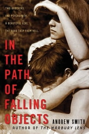 In the Path of Falling Objects ebook by Andrew Smith