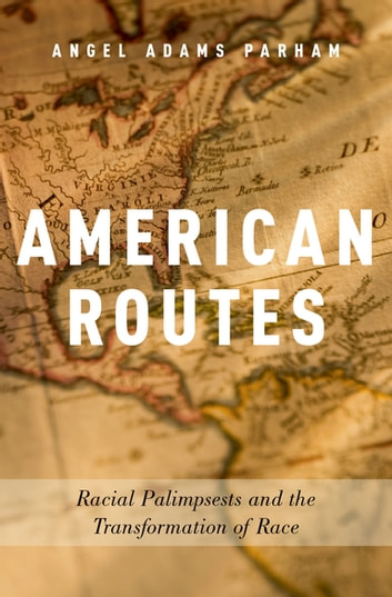 American Routes - Racial Palimpsests and the Transformation of Race ebook by Angel Adams Parham