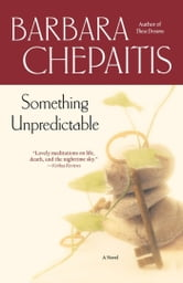 Something Unpredictable - A Novel ebook by Barbara Chepaitis