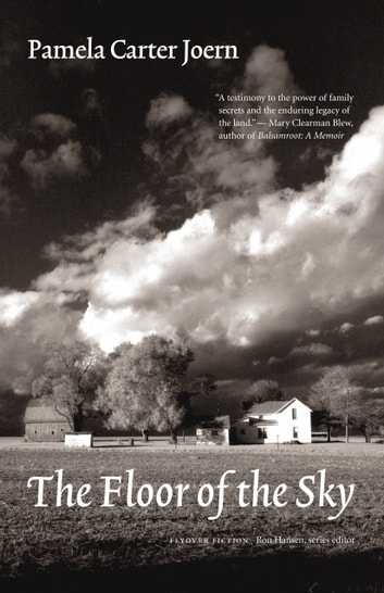 The Floor of the Sky ebook by Pamela Carter Joern