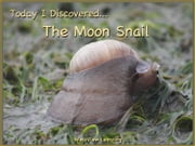 Today I Discovered The Moon Snail ebook by Heather Stannard,Lynn Stannard