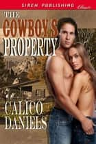 The Cowboy's Property ebook by Calico Daniels
