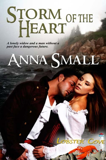 Storm of the Heart ebook by Anna  Small