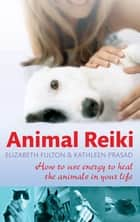 Animal Reiki - How to use energy to heal the animals in your life ebook by Elizabeth Fulton, Kathleen Prasad