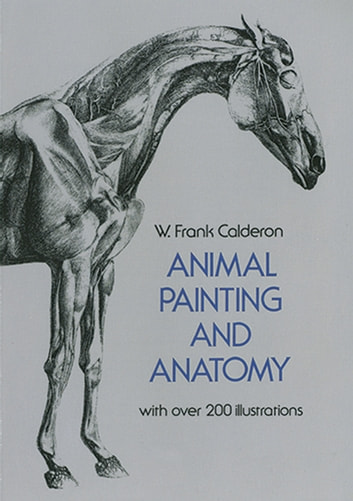 Animal Painting and Anatomy ebook by W. Frank Calderon