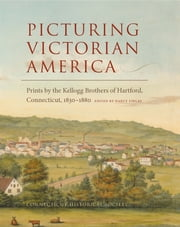 Picturing Victorian America - Prints by the Kellogg Brothers of Hartford, Connecticut, 1830-1880 ebook by Nancy Finlay, Kate Steinway