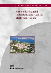 Non-Bank Financial Institutions and Capital Markets in Turkey ebook by Raina, Lalit