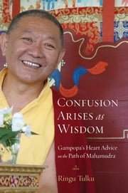 Confusion Arises as Wisdom - Gampopa's Heart Advice on the Path of Mahamudra ebook by Ringu Tulku