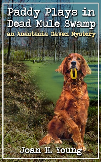 Paddy Plays in Dead Mule Swamp ebook by Joan H. Young