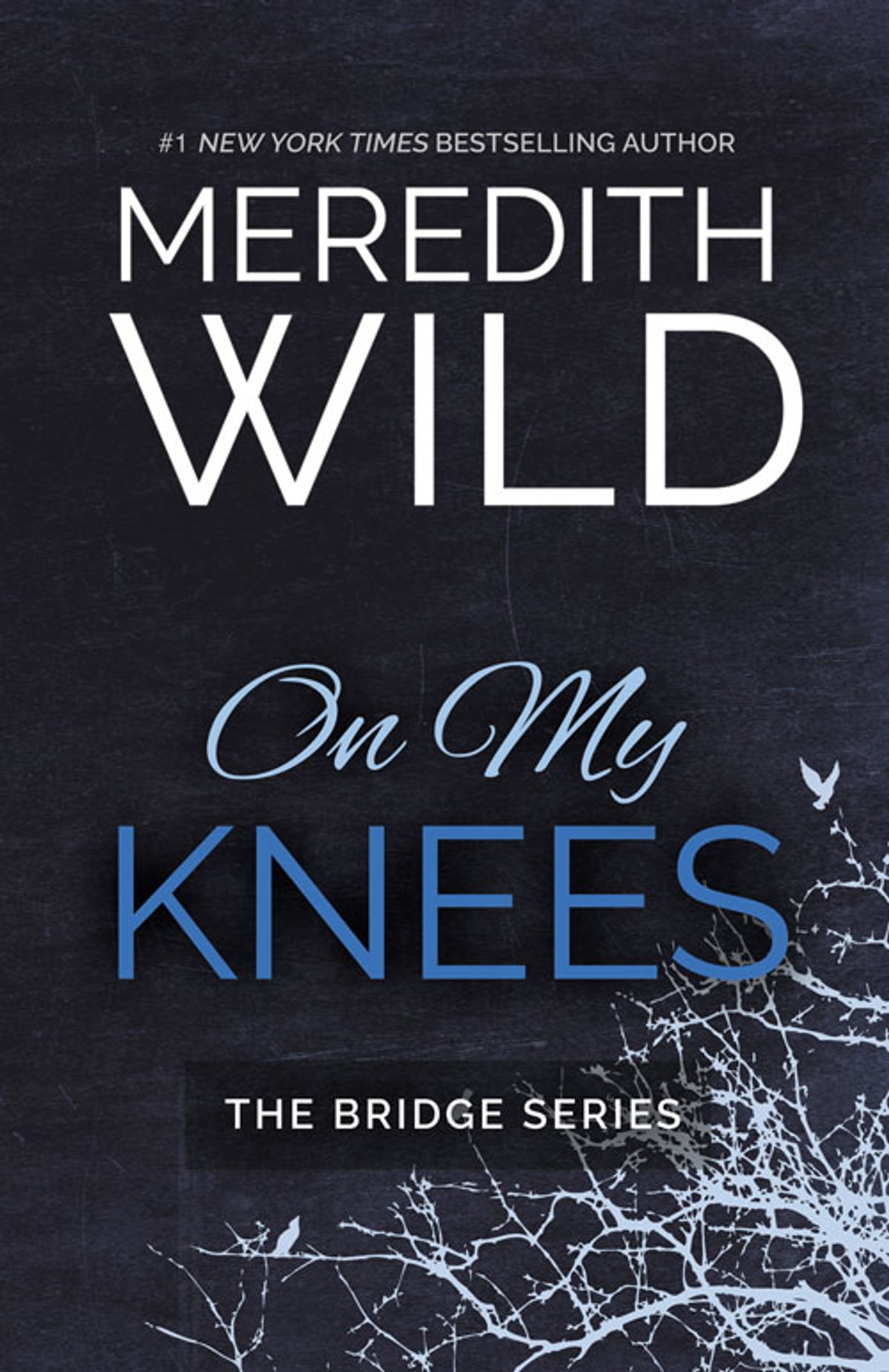On My Knees Ebook By Meredith Wild