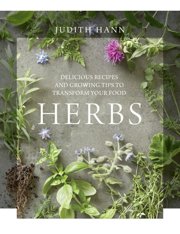 Herbs ebook by Judith Hann