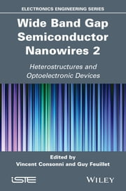 Wide Band Gap Semiconductor Nanowires 2 - Heterostructures and Optoelectronic Devices ebook by