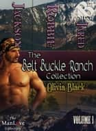 The Belt Buckle Ranch Collection, Volume 1 ebook by Olivia Black